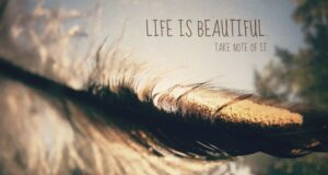 Best Beauty sayings And Quotes