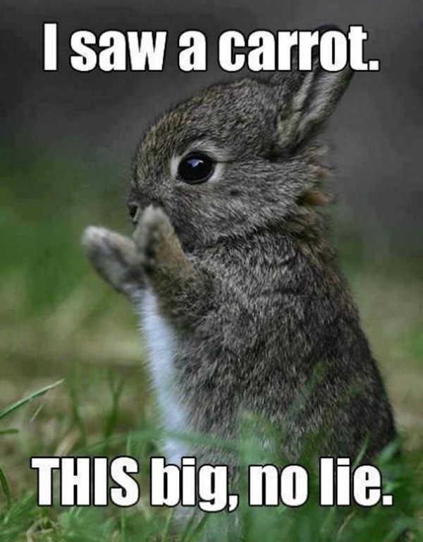 Easter Meme 2020